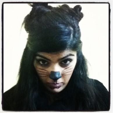 cat2011